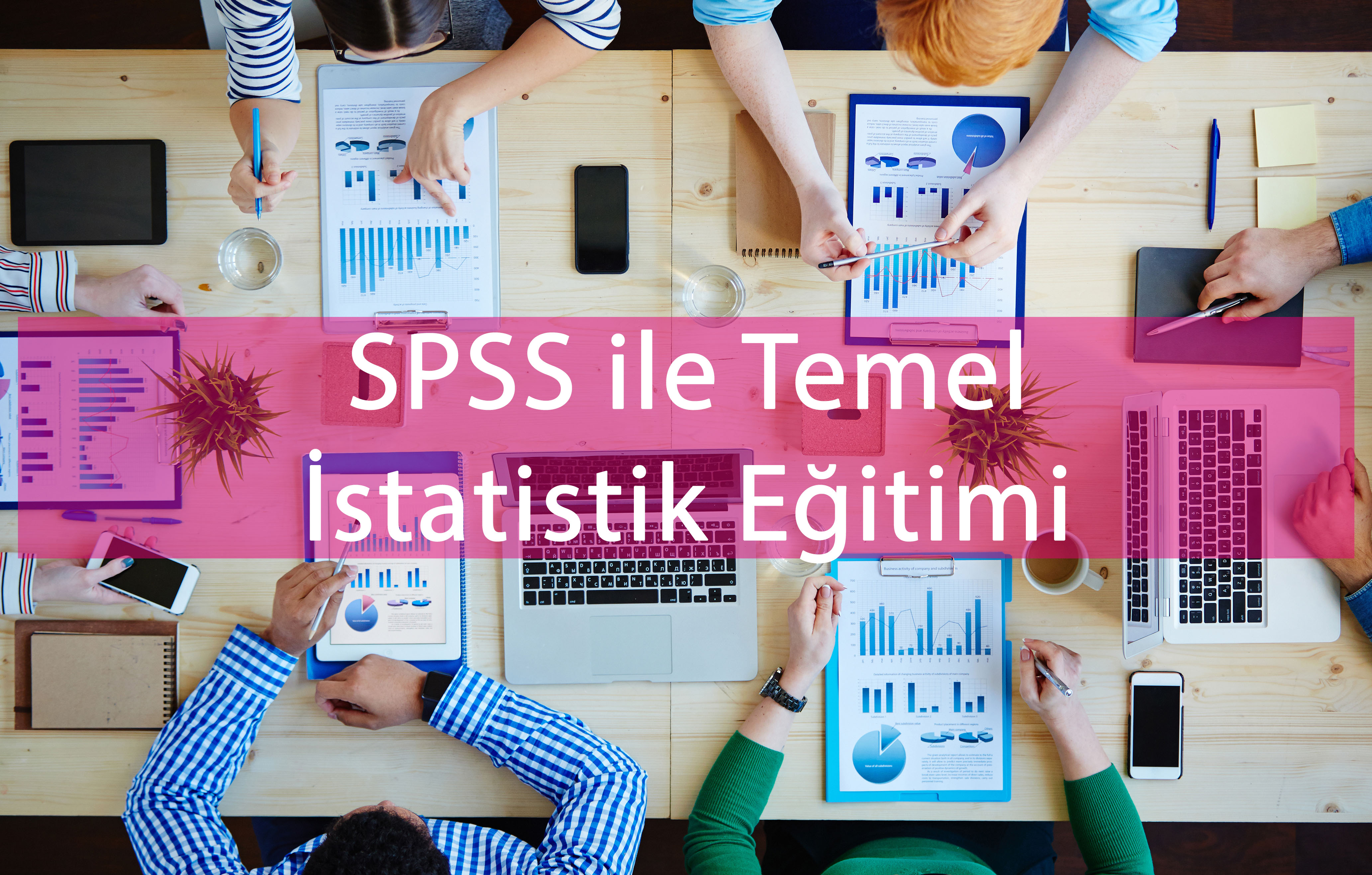 SPSS ile Temel Seviye İstatistik Eğitimi